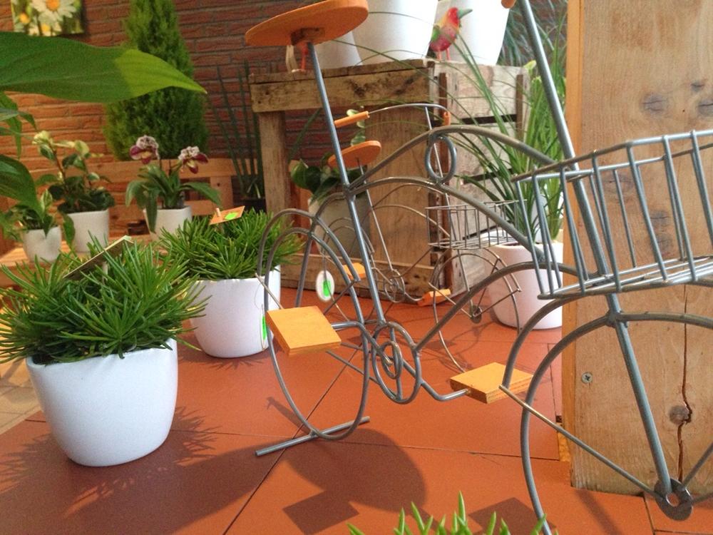 grab herbstbepflanzungen mit heide
