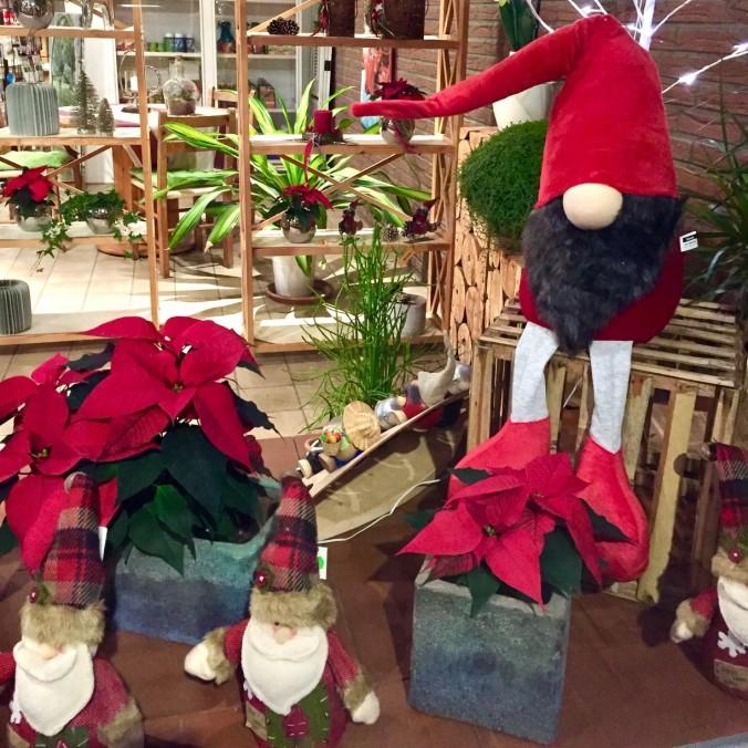 Weihnachten_Deko_Gärtnerei_Enge_Dekoration